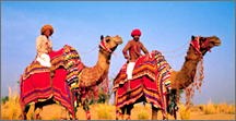 Exploring India, Tour Packages In India